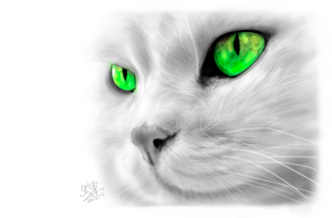 iPad FINGER painting of a cat by chaseroflight