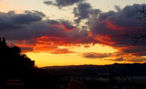 L.A. Sunset by AndySerrano