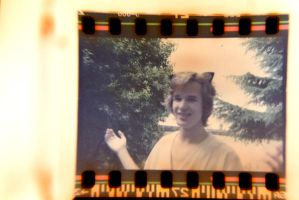 holy cat, happy focus by Video-bob