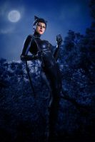 Catwoman by adenry