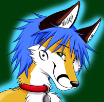 Kikobi Icon commish by AkaiKitsuneKegawa