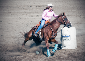 Rodeo4-2014 by Lonewolf-Eyes