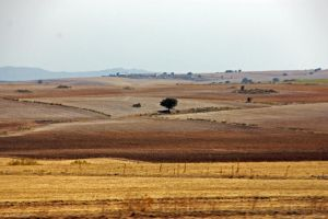 Landscape from Andalucia 07 by CJ-91