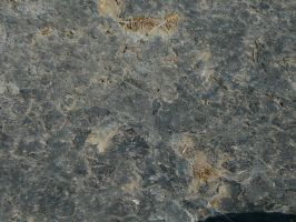 Rock Texture 005 by Struck-Stock