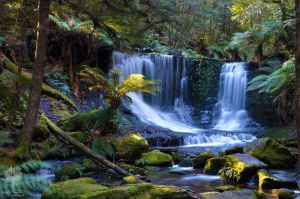 Tasmanian Waterfall by ThatScalieThing