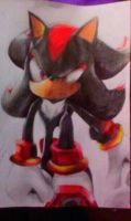 Shadow the Hedgehog by AceArtz1001
