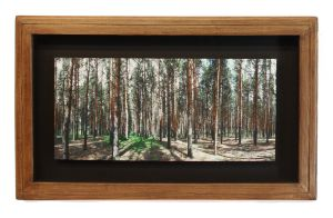 The Woods Limited Edition Framed Print by Joe-Lynn-Design