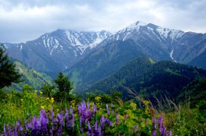 Our mountains by larit123