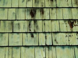 Green Shingles by SaldaeanFarmgirl
