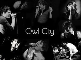 Owl City Wallpaper by Invizibiz