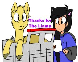 Thanks for the Llama by galienyancats