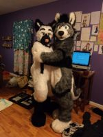 Fursuits! by Angelwolf92