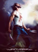 WOLVERINE STRIKES BACK 2 by rudyao
