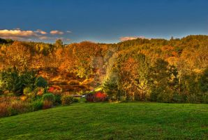 Beautiful Polish Fall - HDR by mawanty
