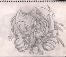Sonic and Tails by andreahedgehog