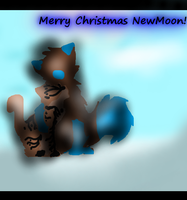 NewMoon's Christmas Prezzie by ResHusky