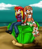 Commission - Knuckles6k 2 by BlizzardWolf