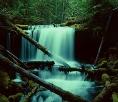 mt adams falls 1 by grelianw