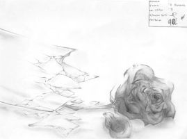 rose by unLOgicaL