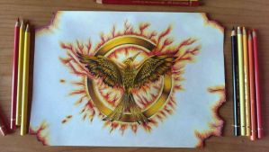 The Mockingjay-Cathing Fire by MikeCastany