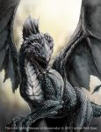 Aleanndyr Dragon by DAA-TRUTH