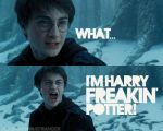 Harry Freakin Potter by SarahKate2011