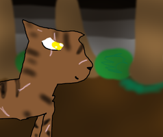 #6 Tigerstar by Fangirl-Trash