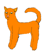 Ginger Cat by TheMusesSong
