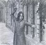 Snape Duel by MadelineSlytherin
