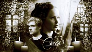 The Hunger Games wallpaper 2 by mia47