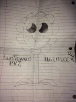 Random sunflower drawing. by halolocke