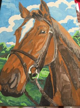 painting by numbers horse by loxanna