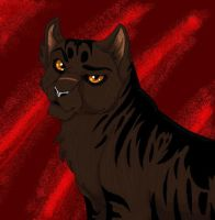 Tigerstar by cottoncritter