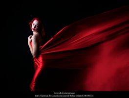 Red silk 11 by faestock