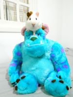 Guinea pig and Sully by camilabraz