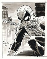 Spider-man Gray by BillReinhold