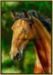 The Stallion - painting by Lynne-Abley-Burton