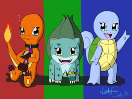 Choose Your Starter by LadyCharizard