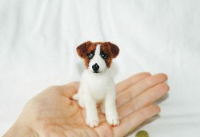 Felted Jack Russell Terrier by amber-rose-creations