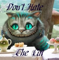 Don't Hate The Cat by PrinnyWarrior