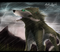 Twilight Princess Link :Wolf form: by XBlackIce