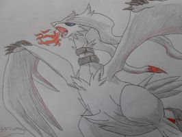 Reshiram 2 (colored) by Spyroconvexity