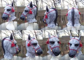 Dapple Grey Horse Hood Turn Around by user-name-not-found