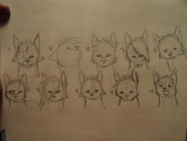 Oh, the many species of dogs.. by SparrowsNskittlez