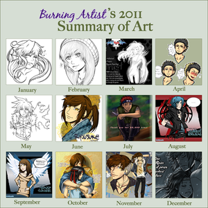 Summary of 2011 Meme by BurningArtist