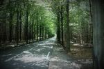 The Road to nowhere... by Corneev