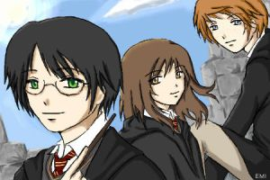 Harry, Hermione and Ron by e-m-i