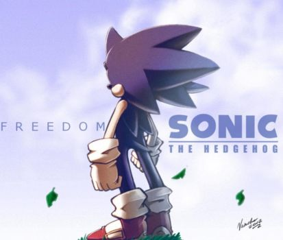 Sonic +21 years+ by nancher