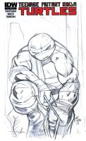 IDW TMNT Sketchcover 1a by scribblesartist