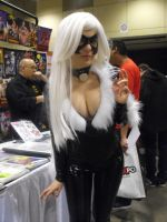 toronto comicon 264 by japookins